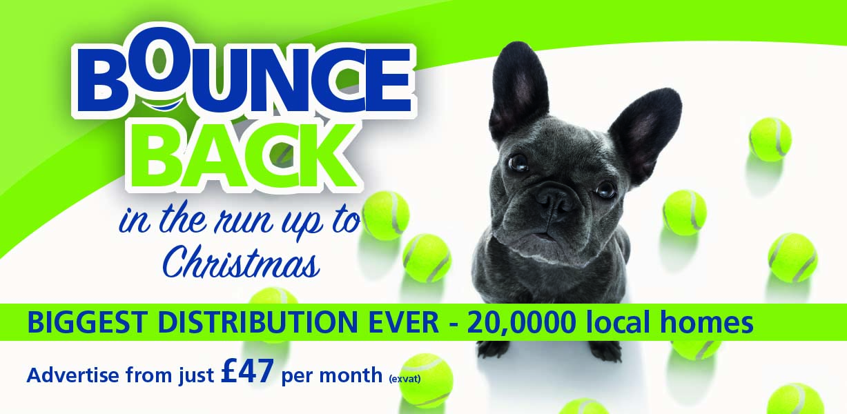 Website Bounce Back Banner – mobile